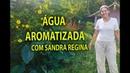 ÁGUA AROMATIZADA COMO PREPARAR COM SANDRA REGINA Plantar em Casa