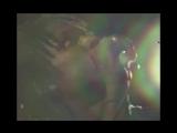 Daniel-Caesar---Get-You-ft-Kali-Uchis-5BOfficial-Video5D