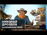Николай Дроздов о Китайском тигре («Кунг-фу Панда»)