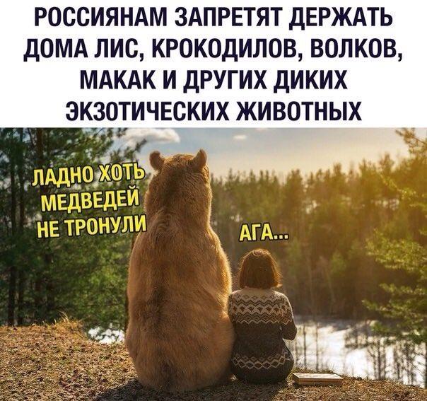 https://pp.userapi.com/c851032/v851032497/102c6c/sm5BQ1h1aFg.jpg