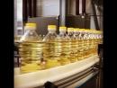 Новая линия фасовки масла в Безенчуке