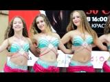 Танцевальный коллектив Школы Восточных Танцев Падишах. Вице-чемпионы мира.