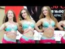 Танцевальный коллектив Школы Восточных Танцев «Падишах». Вице-чемпионы мира.