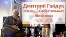 Дмитрий Гайдук   Жизнь Замечательных Животных   Прага 2019
