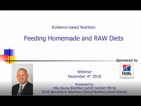 Feeding Homemade and RAW Diets
