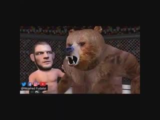 Хабиб и Медведь