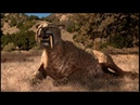 Depredadores Prehistóricos 01 Tigre Dientes De Sable National Geographic 2007