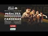 Dave Penalosa vs. Marcos Cardenas