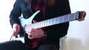 Avenged Sevenfold Hail To The King Solo (cover)