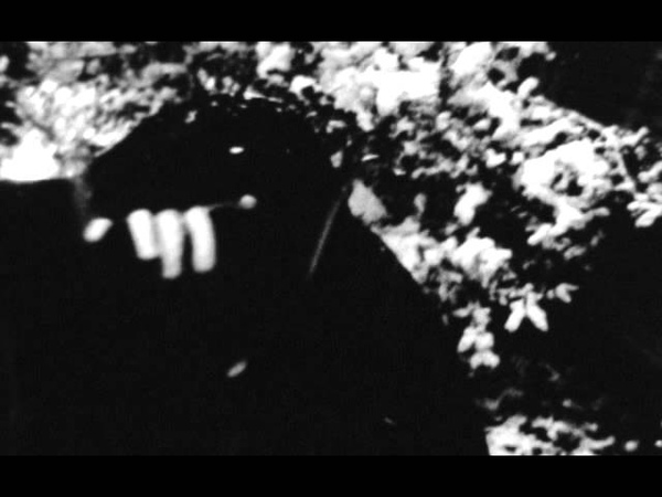The Mount Fuji Doomjazz Corporation 'Roadburn' Trailer 2