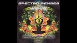 Spectro Senses &amp Magnifix - Pandora's Box Full EP