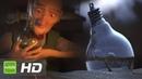 فيلم قصير حماية النبات 1080p HD