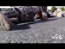 DISTURBING- Moment Iranian Army parade is attacked by gunmen