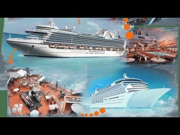 InCruises. MSC. Royal Caribbean. Кругосветное путешествие на лайнере. Денис Парамонов