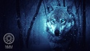Native American Flute Music Wolf Instinct Meditation Music for Shamanic Astral Projection 41804N