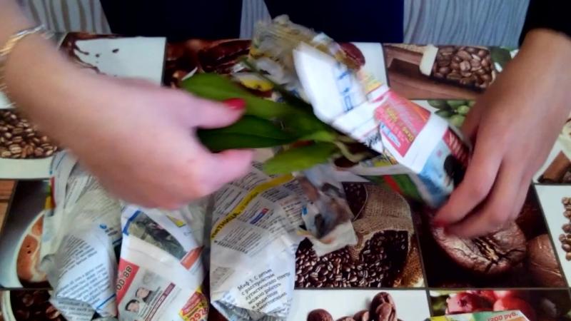 Обзор посылки с подростками орхидей из Красноярска