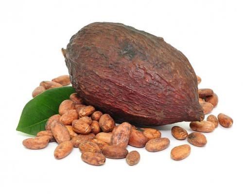 Чашечка горячего какао при ангине и приступах мигрени помогает. И не только: