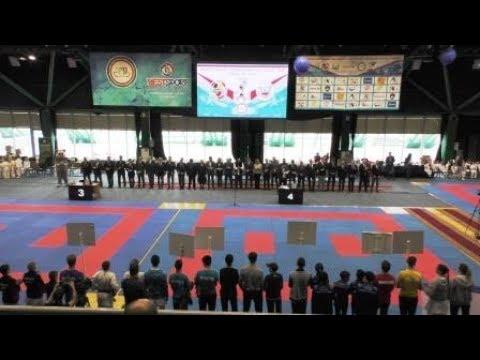 Всероссийские соревнования по каратэ WKF Кубок Ак Барс 12-14 апреля 2019 г. Казань