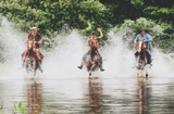 Pantanal, Brazil. Mato Grosso do Sul. (Elena Levon) Cowboys. Pantanieros.