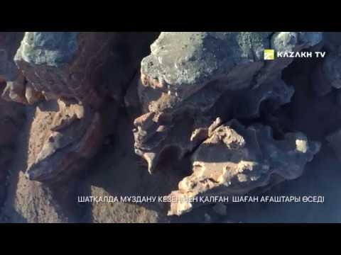 Алматы облысының таңғажайып жерлері   Алматинская область, Казахстан