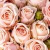 Купить Цветы|Доставка цветов|Нижний Новгород