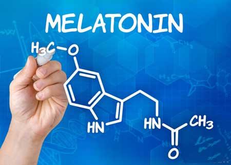 Гормон мелатонин способствует сонливости.