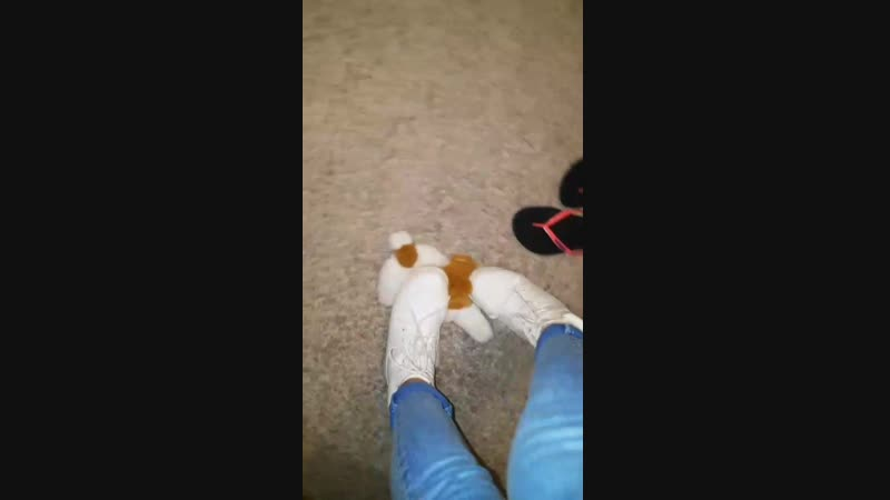 Trample toy dog with white boots part2