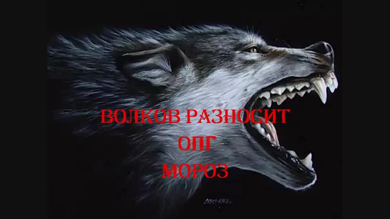Волков разносит конференцию ОПГ Мороз один против шакалов ч 1