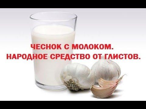Чеснок с молоком - народное средство от глистов, гельминтов и других паразитов в организме человека.