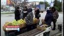 Под контролем в Севастополе проверяют нестационарные торговые объекты