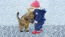 Babies and Cat are Best Friend | Babies and Cats Playing Together 2