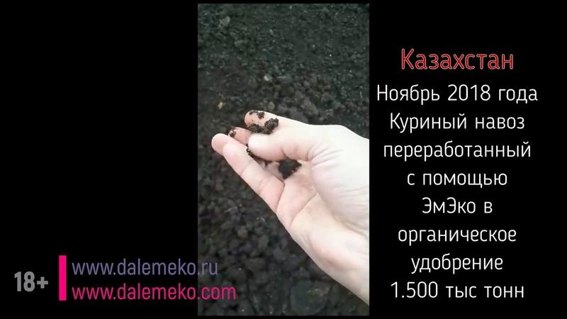 Колоссальная прибыль! с Кумицким Олегом Петровичем.