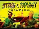 Sting Shaggy, Екатеринбург 05.11.18