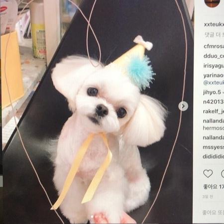 """Leeteuk on Instagram """"lovemore옛날팬미팅콘서트준비하다가발견한음원..차차공개해줄게요"""""""