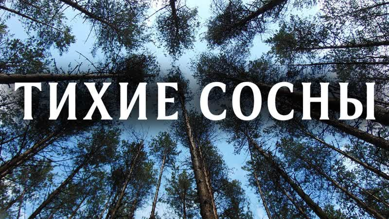 Тихие сосны HD [720p,Фильм,2009,Детектив, мелодрама]