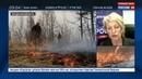 Новости на Россия 24 На тушение лесных пожаров в Приамурье брошены 700 человек и больше 100 единиц техники