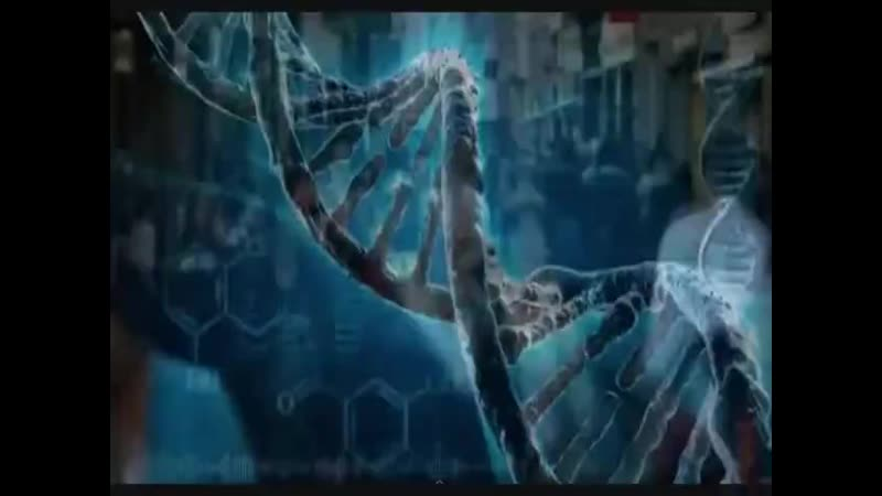 TODA A EVOLUÇÃO HUMANA EM UM CLIPE.mp4 ( 480p ).mp4
