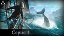 Assassin's Creed IV: Black Flag №1 | Начало