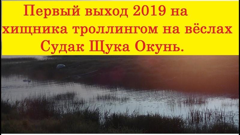 Открытие сезона ловли хищника на троллинг 2019 Щука Судак и Окунь. Pike, Zander and Perch.