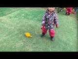 Алина и Юлиана 3 годика, Кай, Акита-ину 10месяцев