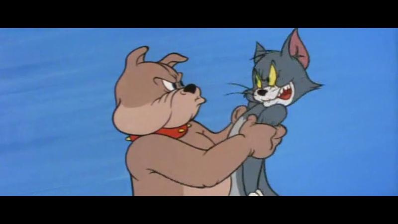 Том и Джерри Собаки и щенки Задом наперед 5 сезон 21 серия