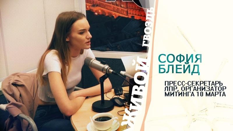 Блейд о том, почему СМИ не пустили на митинг против изоляции рунета / Живой гвоздь 14.03.19