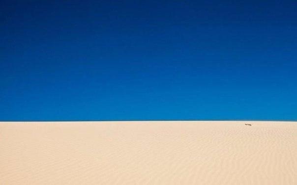 10 снимков, к которым нечего добавить Иногда минимализм в фотографии может сказать больше, чем тысяча слов. Ничего не отвлекает вас от сути. Это можно сравнить со звуками тишины: ничего лишнего,