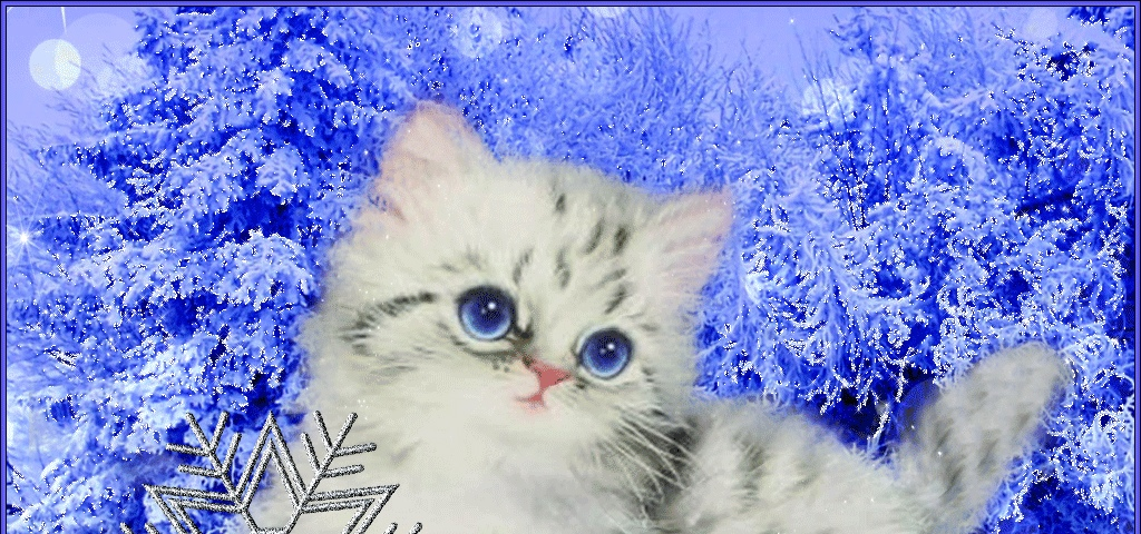 Марта картинка, гифка снежинка тебе на счастье