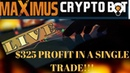 Maximus Crypto Bot Trading Update! Daily Progress With LIVE Trading Session! maximuscryptobot