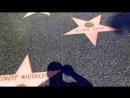 Голливуд Аллея славы Лос Анджелес
