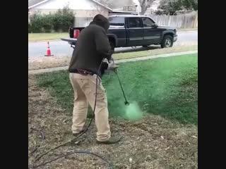 Когда очень хочется зелёный газон