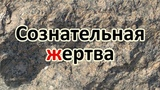 #БЛОКАДА ЛЕНИНГРАДА МУЖЕСТВО и ПРЕОДОЛЕНИЕ СТРАХА...