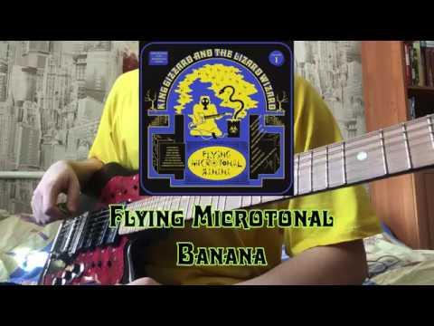 Flying Microtonal Banana (full microtonal cover) - King Gizzard The Lizard Wizard