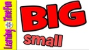 Big and Small Compare Size Opposites Educational Videos for Kids Math for Kids